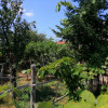 Vanzare casa demolabila cu teren 400 mp, Bucurestii Noi Laminorului
